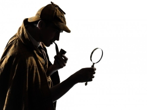 detectiv particular